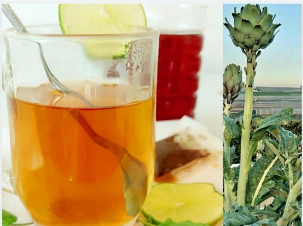 Uống Trà Atiso Đà Lạt Có Giảm Cân Không-