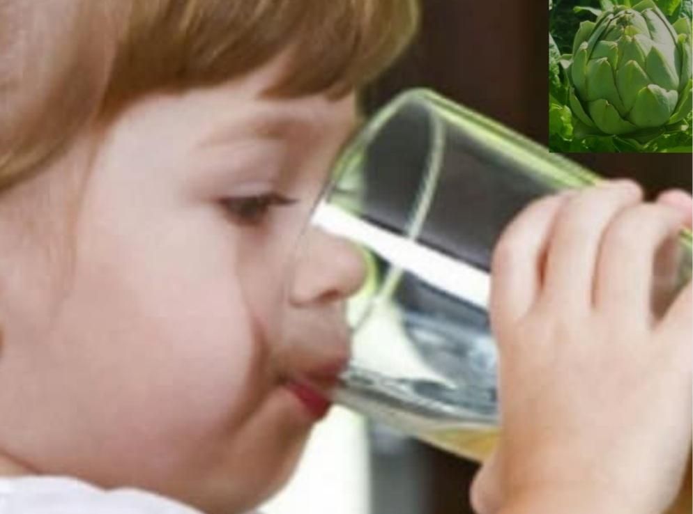 Trẻ Em Uống Trà Atiso Đà Lạt Có Tốt Không - Trẻ Em Bao Nhiêu Tuổi Uống Trà Atiso Được