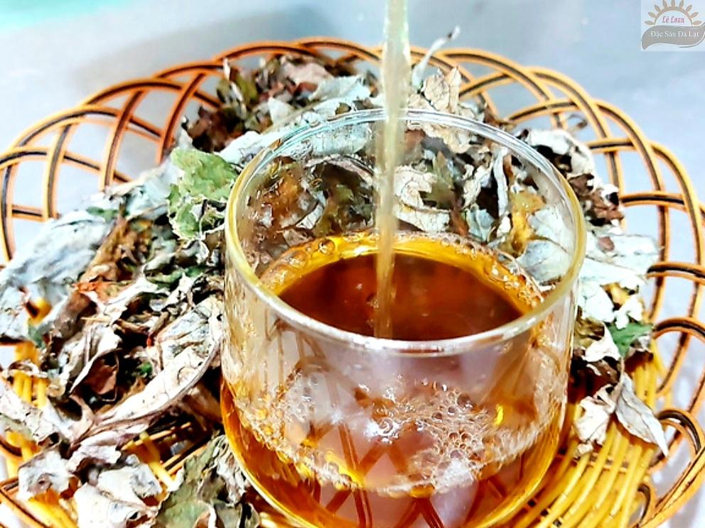 Uống Lá Atiso Dalat Có Tốt Không - Cách Sử Dụng Lá Atiso Dalat