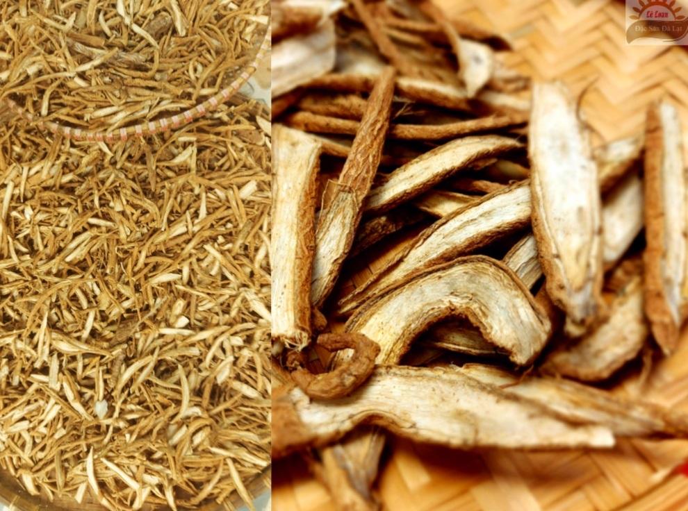 Uống Rễ Cây Atiso Đà Lạt Tốt Không- Cách Chọn Rễ Cây Atiso Đà Lạt loại Ngon  